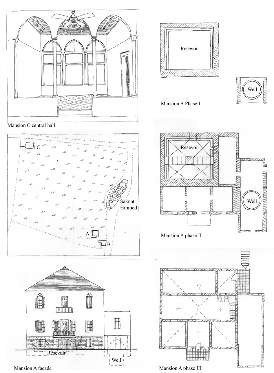 Plantation modern vernacular housing and settlement in for Architecture vernaculaire definition