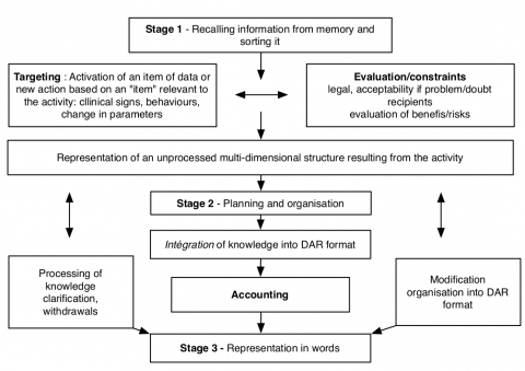 Figure 4 - A model of how written handover documents are produced in Data, Actions and Results format