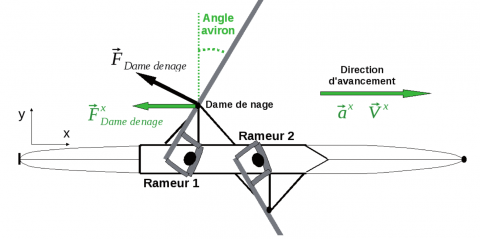 Figure 1 : Vue du dessus d'un « deux de pointe sans barreur ». Figure 1: Bird's-eye view of a coxless pair