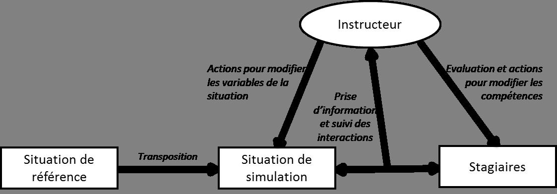 Facilitation Et Simulation Clinique Modalités De Lactivité De
