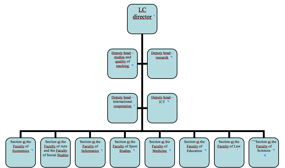 cone health organizational chart and structure essay custom paper