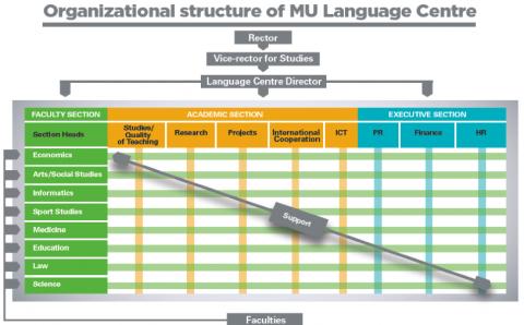organizational language