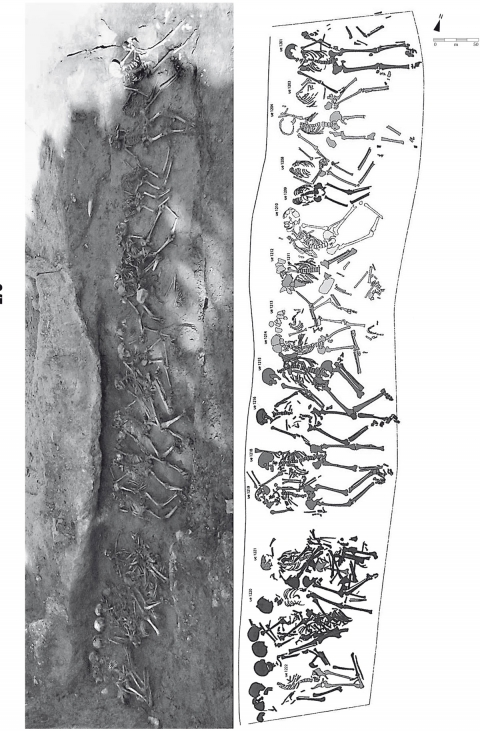 Pourquoi les archéologues anthropologiques utilisent des datations relatives