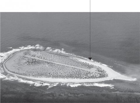 [Fig.2] Vue aérienne de l'île de Tromelin depuis le nord-est.
