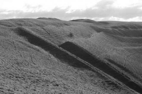 Figure 2: The western ramparts of Hambledon Hill which survive up to 15m high in places, looking south).