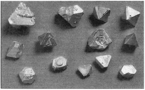 Figure 1: Faked octahedral gold crystals of up to 30 grams, purported to originate from the Santa Elena gold mine (Venezuela).Figure 1 : Faux cristaux en or octogonal de plus de 30 g, dont la provenance supposée est la mine d'or de Santa Elena (Venezuela).