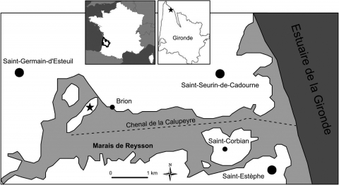 Figure 1: Localization of the site of Brion ().