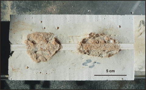 Figure3: Example of a plaster coating of an historical mortars to allow the realization of a scratching test.