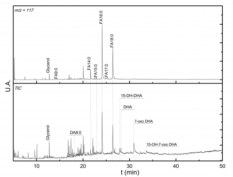Figure 4 : Spectre IRTF de l'échantillon B29int.Figure 4: IRTF spectrum of B29int sample.