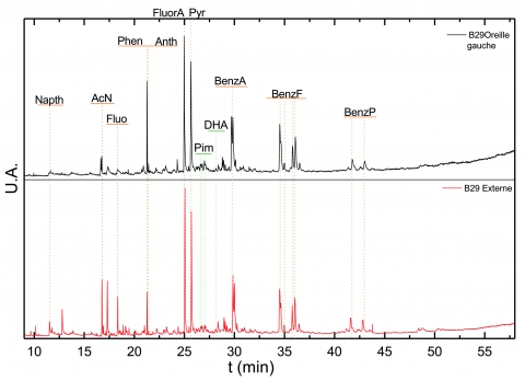 Figure 5 : Chromatogrammes CPG/SM des échantillons B29og et B29ext après triméthylsilylation (TIC).Figure 5: CPG/SM chromatograms of B29og and B29ext samples after trimethylsilylation (TIC).