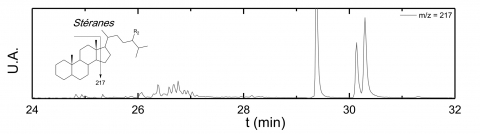 Figure 6 : Chromatogramme CPG/SM de l'échantillon B29og après triméthylsilylation (m/z = 217).Figure 6: CPG/SM chromatogram of B29og sample after trimethylsilylation (m/z = 217).