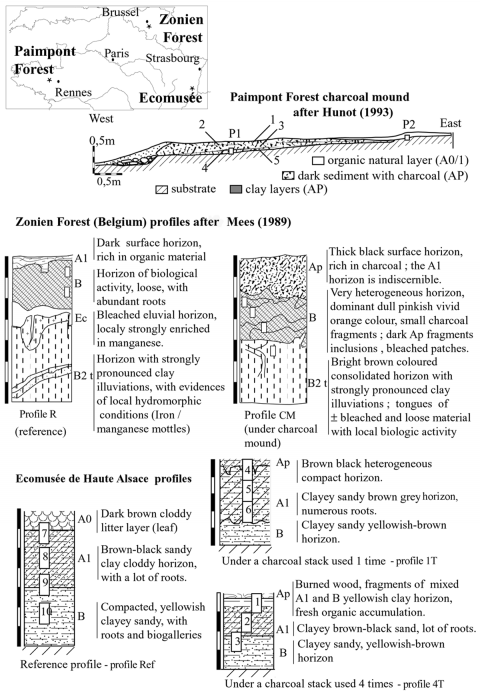 Figure 1: Location of the sites and soil profile descriptions from the Paimpont Forest (France) charcoal mound transect, the Zonien Forest (Belgium) described after Florias Mees (1989), and the Ecomusée de Haute Alsace (France). Figure1: Localisation des sites et description du profil de la meule de la forêt de Paimpont (France), de la forêt de Soigne (Belgique, d'après Florias Mees, 1989) et de l'Écomusée de Haute Alsace (France).