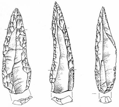 Mousterian points from Hayonim Cave