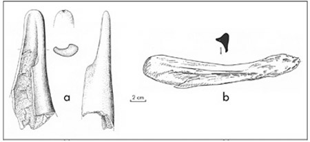 Planche IV: Heavy Tools from Neolithic Pre Pottery A