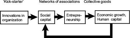 Figure 5. The building of the beneficial social capital.