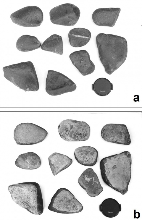 Figure 1. Rock fragments from the Wanlin site with typical dark patina.