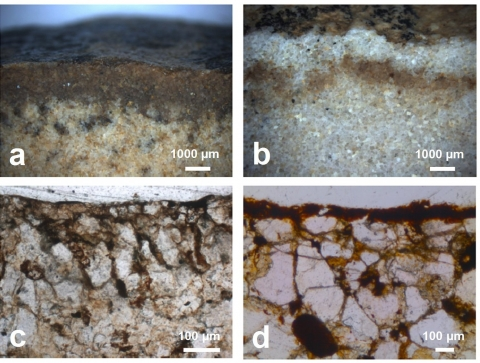 Figure 4. Micromorphology of the coatings on sandstone fragments from the Wanlin site.