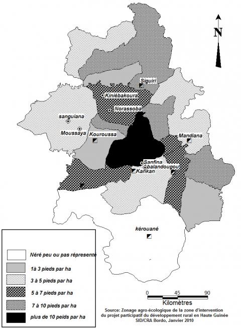 Figure 4. Densité de population des arbres à néré dans la région administrative de Kankan.