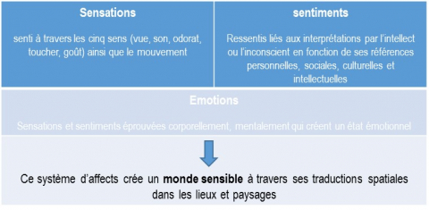 Figure 1. Le système d'affects à l'origine du monde sensible
