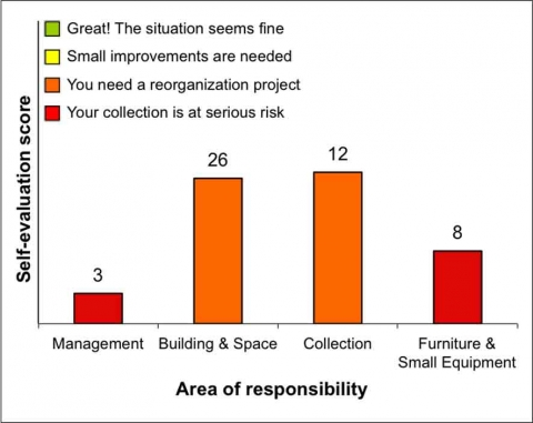Fig. 6 Results of the RE-ORG Self-Evaluation for Janapada Sampada ethnographic collection storage, IGNCA, India, on 7 February 2011