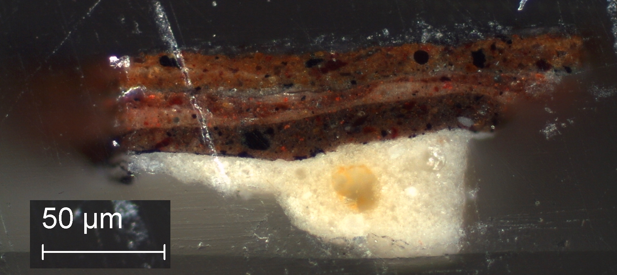 Lead White Painting Cross Section