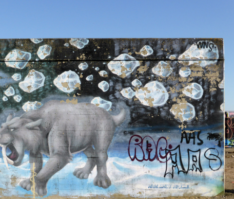 The problem of vandalism on contemporary outdoor murals and
