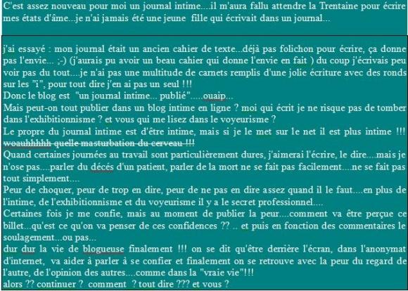Blog Un Journal Intime Comme Memoire De Soi