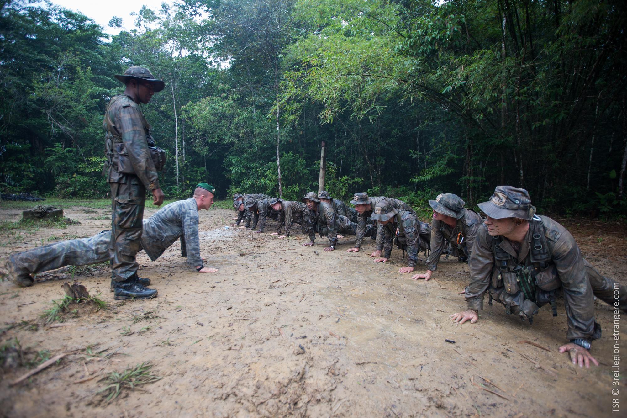 Floresta Do Mal Online with deux mois à la légion : une autre vision de la forêt