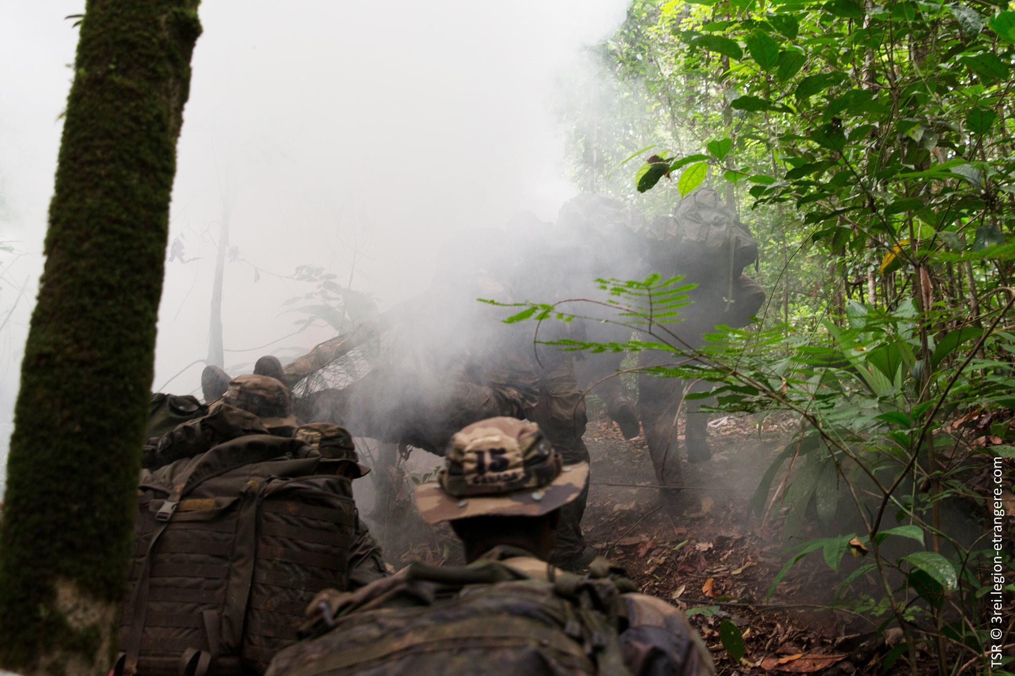 Floresta Do Mal Online in deux mois à la légion : une autre vision de la forêt