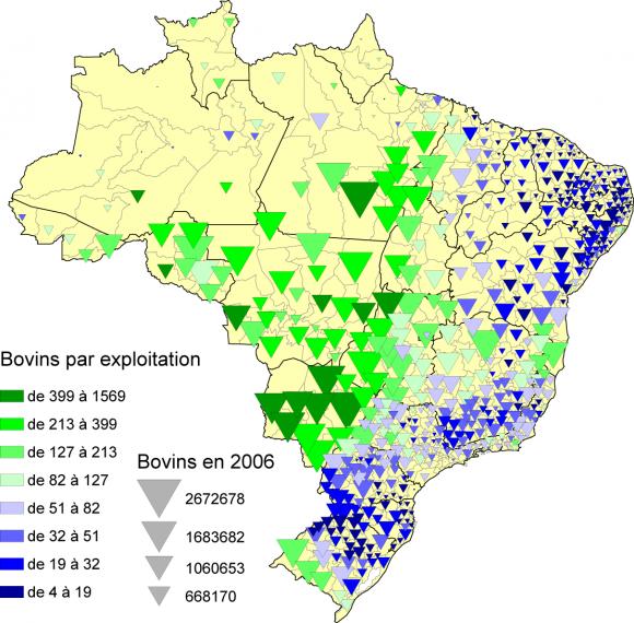Carte Du Bresil Agriculture.Bovins Et Humains Au Bresil En 2007
