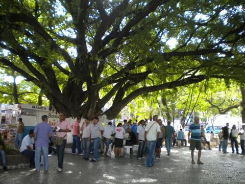 Foto 12. Vendedores de pedras com suas bolsas na Praça Tiradentes em Teófilo Otoni.