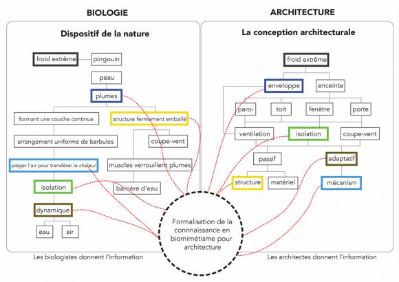 Biomimétisme En Architecture état Méthodes Et Outils