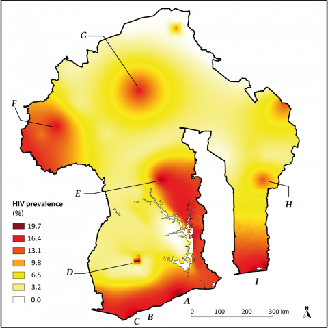 Figure 2: Surface of HIV prevalence in the model (national prevalence of 10%, created ad hoc by spatial interpolation)