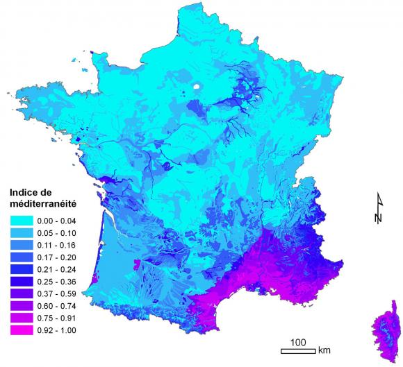La Carte De Vegetation Du Cnrs A L Ere Du Numerique