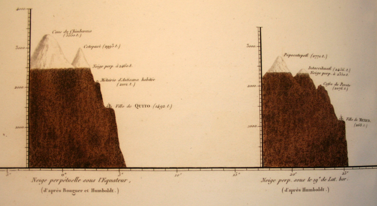 Alexander Von Humboldt Diagram Of A Crosssection The Earth39s Crust Is Made Up