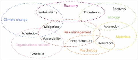 Figure 1: The multidisciplinary aspect of resilience