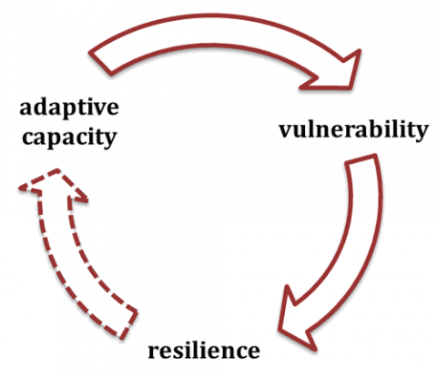 Figure 2: From vulnerability to resilience: moving forward or backward?