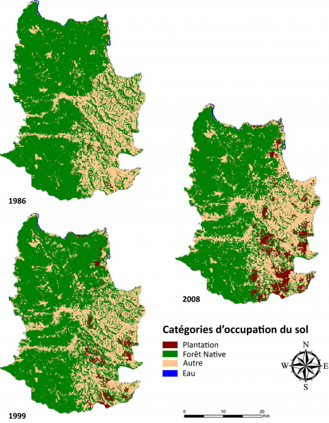 Figure 2 : Visualisation diachronique de l'occupation du sol (1986-1999-2008)