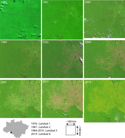 Figure 2: Progression of the forest frontier in the region of Ariquemes (Rondônia)3