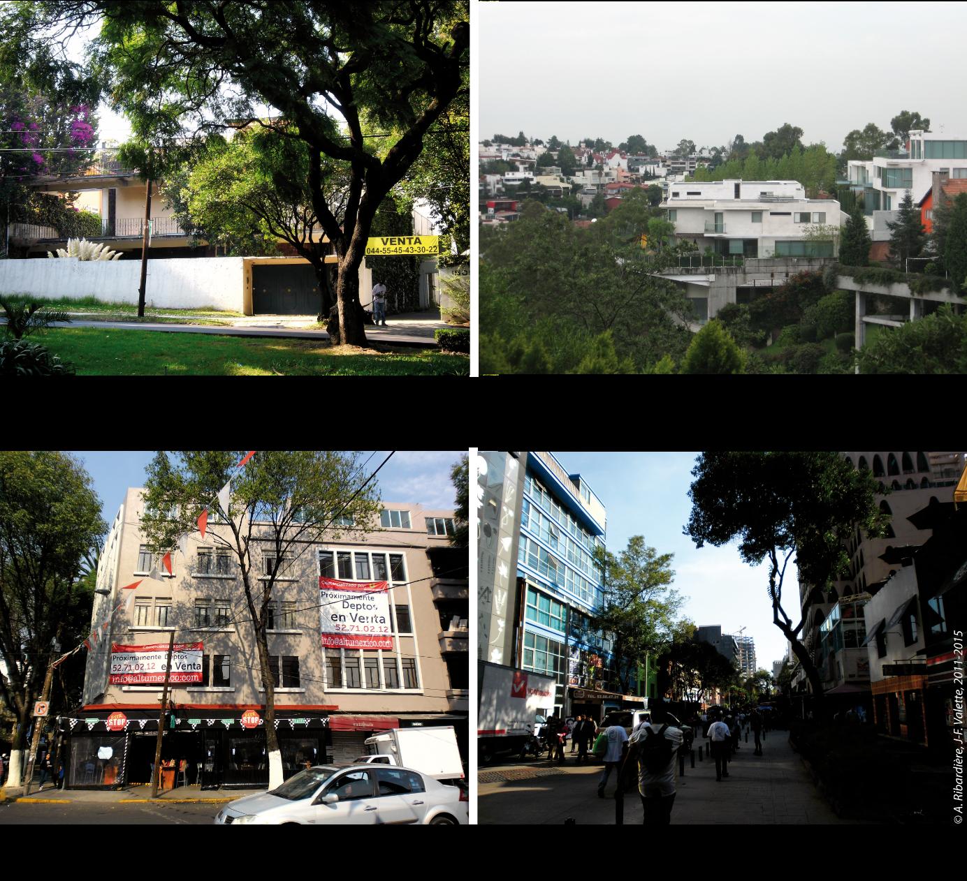 4257dc2463661 Géographie des prix immobiliers à Mexico : variabilité et ...