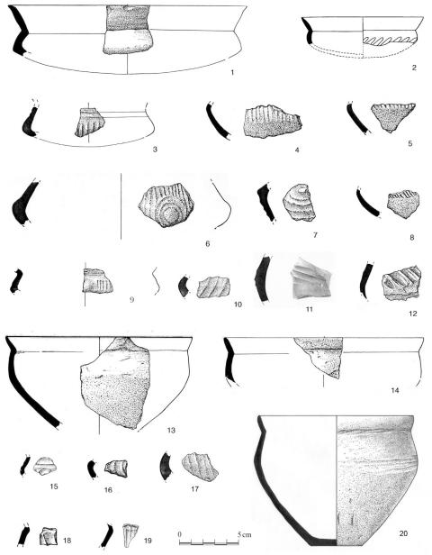 le profil d'oignon en ligne de rencontre plages du Nord datant