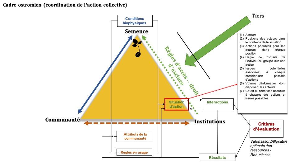 Semences Et Agrobiodiversite Pour Une Lecture Ontologique Des Bio Communs Locaux