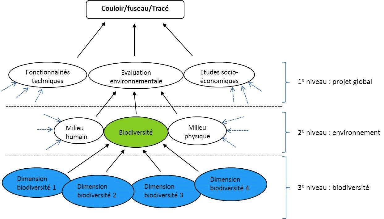 schema de la biodiversite