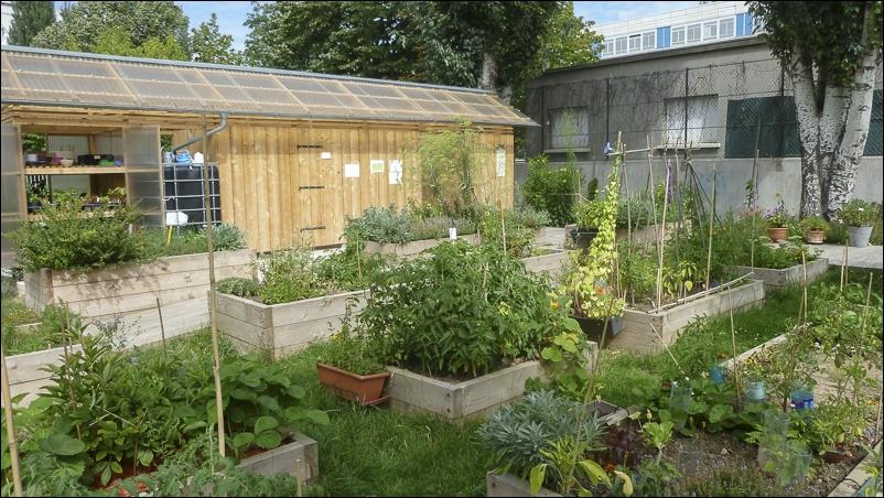 Les Jardins Partages Franciliens Scenes De Participation Citoyenne