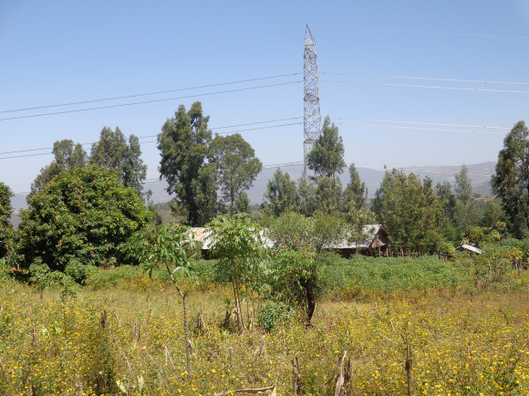 "The Materialization of ""Developmental State"" in Ethiopia"