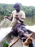 Gillnetting by a Njem fisherman on the Dja river, southern Cameroon