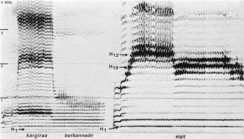 Fig. 14: Même pièce que fig. 13, un peu plus loin.