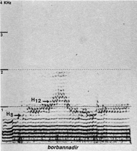 Fig. 16: Imitation par Trân Quang Hai du style borbannadir de la fig. 13.