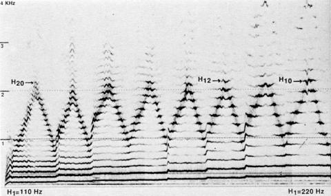 Fig. 2: Échelles d'harmoniques avec différentes hauteurs du fondamental (110 à 220 Hz, selon une échelle diatonique), par Trân Quang Hai. Technique à deux cavités.