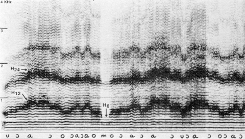Fig. 6: Imitation par Trân Quang Hai du style kargiraa tuva de la fig. 5.
